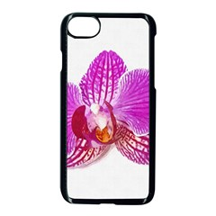 Lilac Phalaenopsis Flower, Floral Oil Painting Art Apple Iphone 8 Seamless Case (black) by picsaspassion