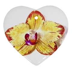 Yellow Phalaenopsis Flower, Floral Aquarel Watercolor Painting Art Heart Ornament (two Sides) by picsaspassion