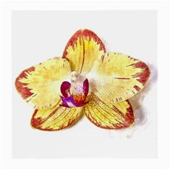 Yellow Phalaenopsis Flower, Floral Aquarel Watercolor Painting Art Medium Glasses Cloth (2 Side) by picsaspassion