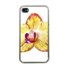 Yellow Phalaenopsis Flower, Floral Aquarel Watercolor Painting Art Apple Iphone 4 Case (clear) by picsaspassion
