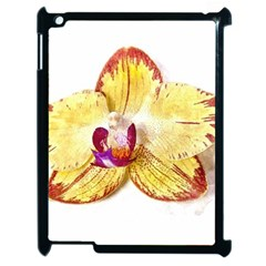 Yellow Phalaenopsis Flower, Floral Aquarel Watercolor Painting Art Apple Ipad 2 Case (black) by picsaspassion