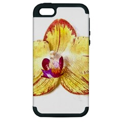 Yellow Phalaenopsis Flower, Floral Aquarel Watercolor Painting Art Apple Iphone 5 Hardshell Case (pc+silicone) by picsaspassion