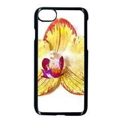 Yellow Phalaenopsis Flower, Floral Aquarel Watercolor Painting Art Apple Iphone 7 Seamless Case (black) by picsaspassion