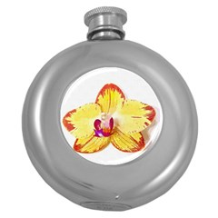 Phalaenopsis Yellow Flower, Floral Oil Painting Art Round Hip Flask (5 Oz) by picsaspassion