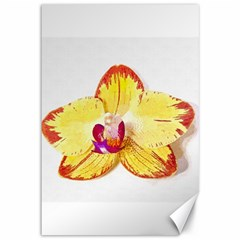 Phalaenopsis Yellow Flower, Floral Oil Painting Art Canvas 12  X 18   by picsaspassion