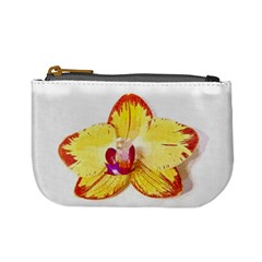 Phalaenopsis Yellow Flower, Floral Oil Painting Art Mini Coin Purses by picsaspassion