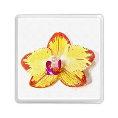 Phalaenopsis Yellow Flower, Floral Oil Painting Art Memory Card Reader (square)