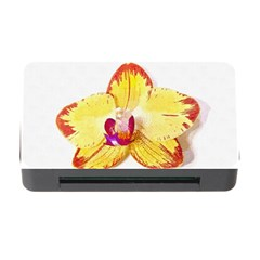 Phalaenopsis Yellow Flower, Floral Oil Painting Art Memory Card Reader With Cf by picsaspassion