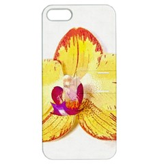 Phalaenopsis Yellow Flower, Floral Oil Painting Art Apple Iphone 5 Hardshell Case With Stand by picsaspassion