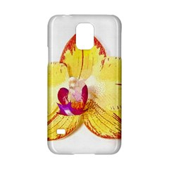 Phalaenopsis Yellow Flower, Floral Oil Painting Art Samsung Galaxy S5 Hardshell Case  by picsaspassion