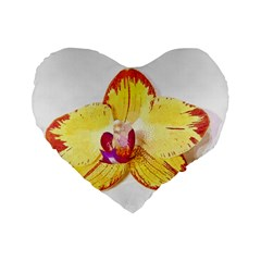 Phalaenopsis Yellow Flower, Floral Oil Painting Art Standard 16  Premium Flano Heart Shape Cushions by picsaspassion