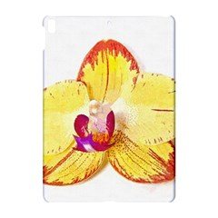 Phalaenopsis Yellow Flower, Floral Oil Painting Art Apple Ipad Pro 10 5   Hardshell Case by picsaspassion