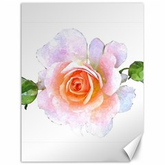 Pink Rose Flower, Floral Watercolor Aquarel Painting Art Canvas 12  X 16   by picsaspassion