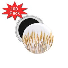Wheat Plants 1 75  Magnets (100 Pack)  by Mariart