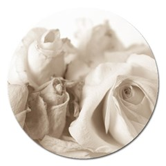 Vintage Rose Shabby Chic Background Magnet 5  (round)