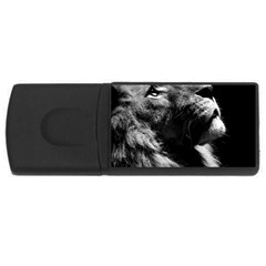 Male Lion Face Rectangular Usb Flash Drive by Celenk