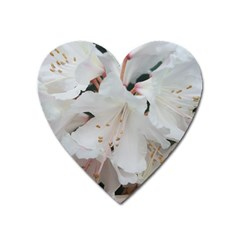 Floral Design White Flowers Photography Heart Magnet by yoursparklingshop