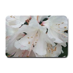 Floral Design White Flowers Photography Small Doormat  by yoursparklingshop