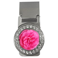 Pink Flower Japanese Tea Rose Floral Design Money Clips (cz)  by yoursparklingshop