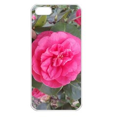 Pink Flower Japanese Tea Rose Floral Design Apple Iphone 5 Seamless Case (white) by yoursparklingshop