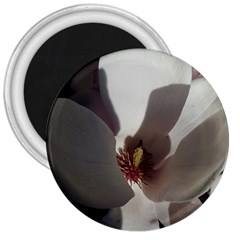 Magnolia Floral Flower Pink White 3  Magnets by yoursparklingshop