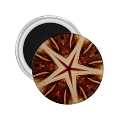 Spaghetti Italian Pasta Kaleidoscope Funny Food Star Design 2 25  Magnets by yoursparklingshop