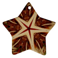 Spaghetti Italian Pasta Kaleidoscope Funny Food Star Design Star Ornament (two Sides) by yoursparklingshop