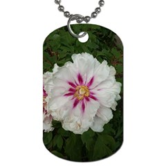 Floral Soft Pink Flower Photography Peony Rose Dog Tag (one Side) by yoursparklingshop