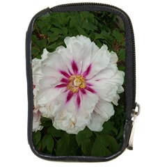 Floral Soft Pink Flower Photography Peony Rose Compact Camera Cases by yoursparklingshop