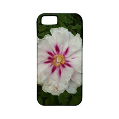 Floral Soft Pink Flower Photography Peony Rose Apple Iphone 5 Classic Hardshell Case (pc+silicone) by yoursparklingshop