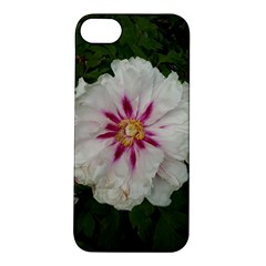 Floral Soft Pink Flower Photography Peony Rose Apple Iphone 5s/ Se Hardshell Case by yoursparklingshop