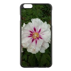 Floral Soft Pink Flower Photography Peony Rose Apple Iphone 6 Plus/6s Plus Black Enamel Case by yoursparklingshop