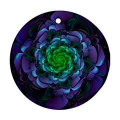 Beautiful Purple & Green Aeonium Arboreum Zwartkop Round Ornament (two Sides) by jayaprime