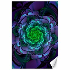 Beautiful Purple & Green Aeonium Arboreum Zwartkop Canvas 12  X 18   by jayaprime