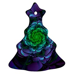 Beautiful Purple & Green Aeonium Arboreum Zwartkop Ornament (christmas Tree)  by jayaprime
