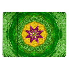 Feathers In The Sunshine Mandala Samsung Galaxy Tab 10 1  P7500 Flip Case by pepitasart
