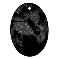 Black And White Leaves Photo Oval Ornament (two Sides) by dflcprintsclothing