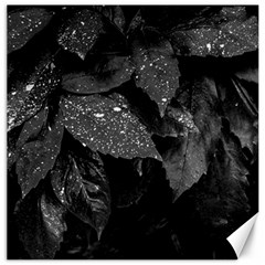 Black And White Leaves Photo Canvas 20  X 20   by dflcprintsclothing