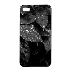 Black And White Leaves Photo Apple Iphone 4/4s Seamless Case (black) by dflcprintsclothing
