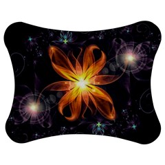 Beautiful Orange Star Lily Fractal Flower At Night Jigsaw Puzzle Photo Stand (bow) by jayaprime
