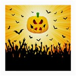 Halloween Pumpkin Bat Party Night Ghost Medium Glasses Cloth (2-Side) Back