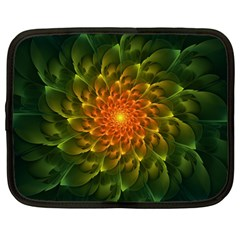 Beautiful Orange Green Desert Cactus Fractalspiral Netbook Case (large) by jayaprime