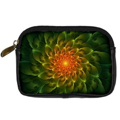 Beautiful Orange Green Desert Cactus Fractalspiral Digital Camera Cases by jayaprime