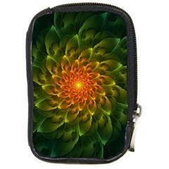 Beautiful Orange Green Desert Cactus Fractalspiral Compact Camera Cases by jayaprime
