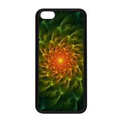 Beautiful Orange Green Desert Cactus Fractalspiral Apple Iphone 5c Seamless Case (black) by jayaprime
