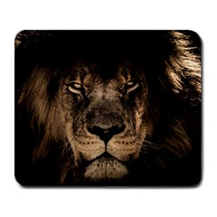 African Lion Mane Close Eyes Large Mousepads
