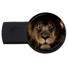 African Lion Mane Close Eyes Usb Flash Drive Round (2 Gb) by Celenk
