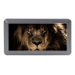 African Lion Mane Close Eyes Memory Card Reader (mini)