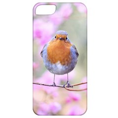 Spring Bird Bird Spring Robin Apple Iphone 5 Classic Hardshell Case