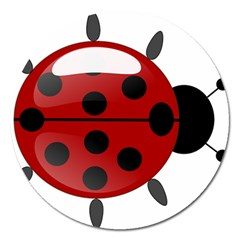 Ladybug Insects Colors Alegre Magnet 5  (round) by Celenk